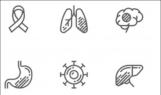 ⓒshutterstock.com 이미지